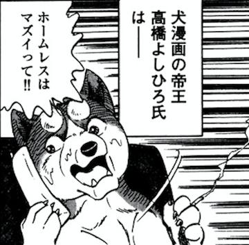 55sai_2